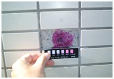 3. コンクリート中性化深度測定